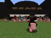 Schweinerennen_1.png